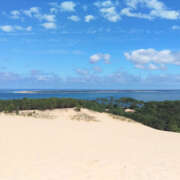 Entre Dune et Forêt
